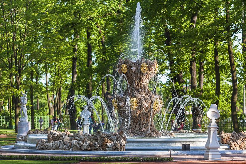1fec814f38cb2 Международный фестиваль «Императорские сады России» впервые пройдет ...